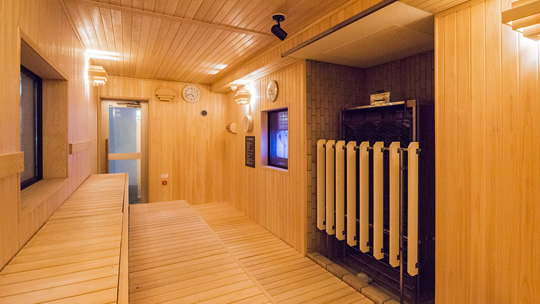 Finnish Hot Steam Sauna
