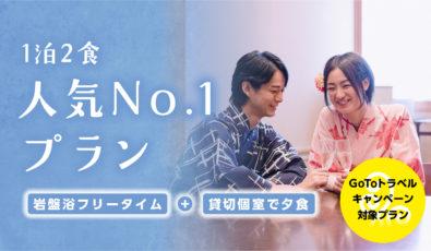 【GoTo対象】 <br>人気No.1プラン