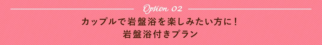 オプション2