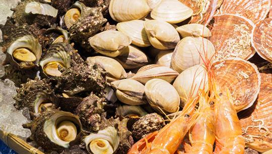 hamayaki: grilling seafood