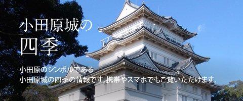 小田原のシンボルである小田原城の四季の情報です。