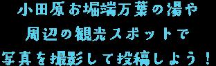 小田原お堀端万葉の湯や 周辺の観光スポットで 写真を撮影して投稿しよう!